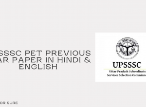 UPSSSC PET Question Paper in Hindi